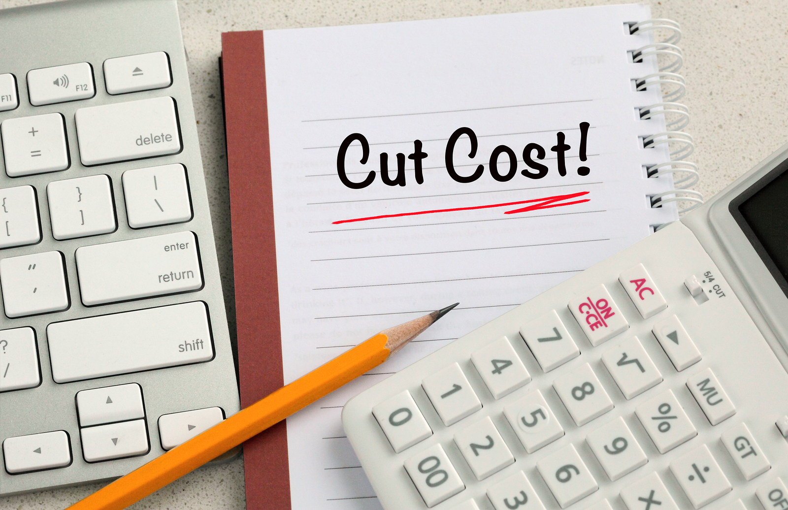 Are you one of the UK businesses planning to reduce costs in the new year?